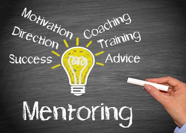 mentorship for activism
